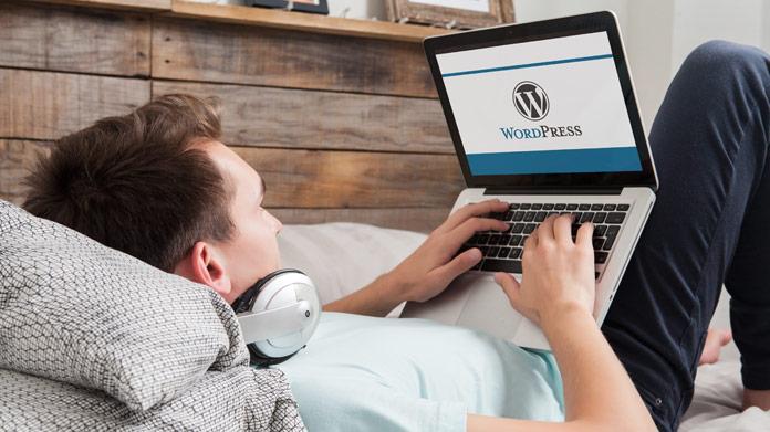 Izdelava WordPress strani